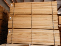 2. White Oak 22mm