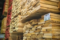 EXPORT OF WOOD AND FOREST PRODUCTS WILL REACH USD 7 BILLION FROM NOW